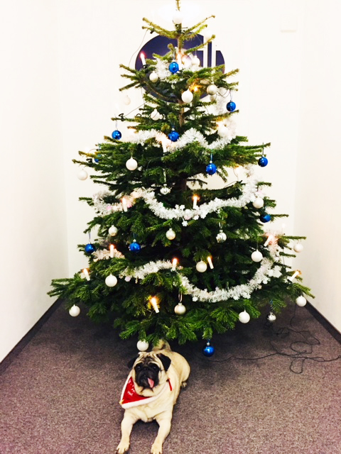 Ho Ho Ho Frohe Weihnachten.Ho Ho Ho Frohe Weihnachten An Alle Expertime